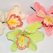 """""""Flori de orhidee"""""""